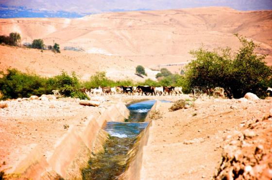 Muaz Bin Jabal, Jordan